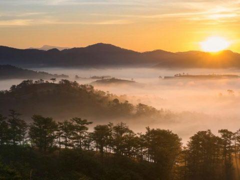 Top 5 địa điểm nhất định phải đến khi tổ chức Du Lịch công ty tại Đà Lạt