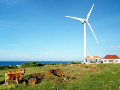 Du Lịch công ty tại Phú Quý – Khám phá ngay những địa danh tại hòn đảo đẹp như mơ